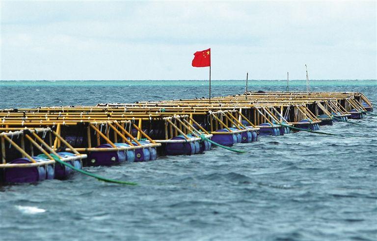 海城区鱼排