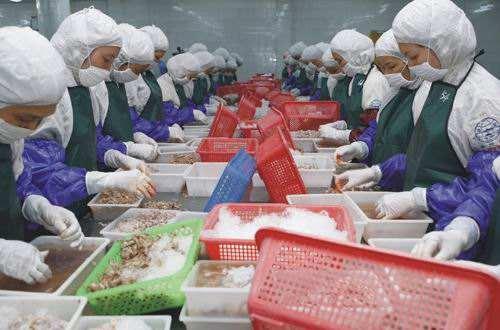 海产品深加工