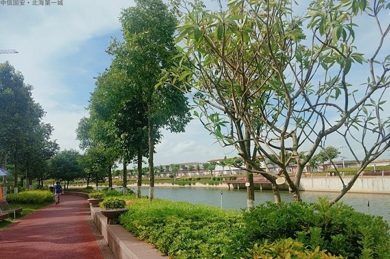 中信国安北海第一城实景图